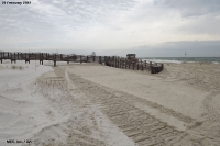 February 21, 2013 - Gulf State Park (Walkover Sand Push-up)